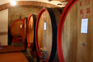 Giant Chianti barrels, Siena, Italy