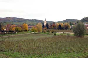 Kaiserstuhl vineyards, Baden, Germany